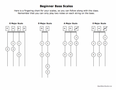 Beginner Bass Scales